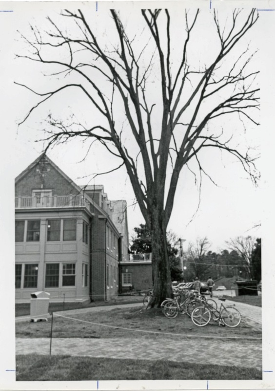 Althea Hunt Hall, undated