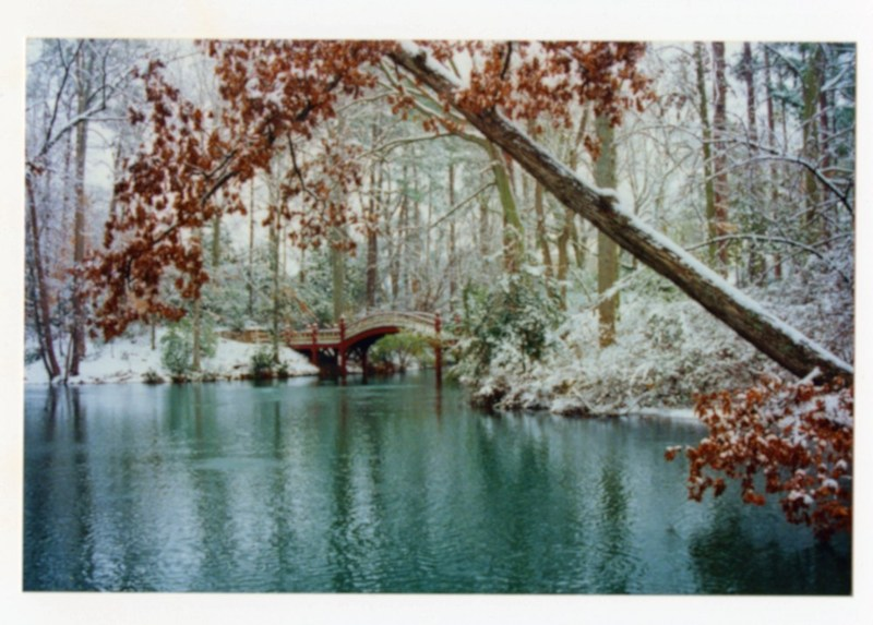 Crim Dell Bridge in Snow, 2000